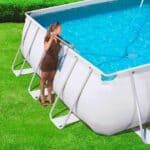 cleanner-for-pool (1)